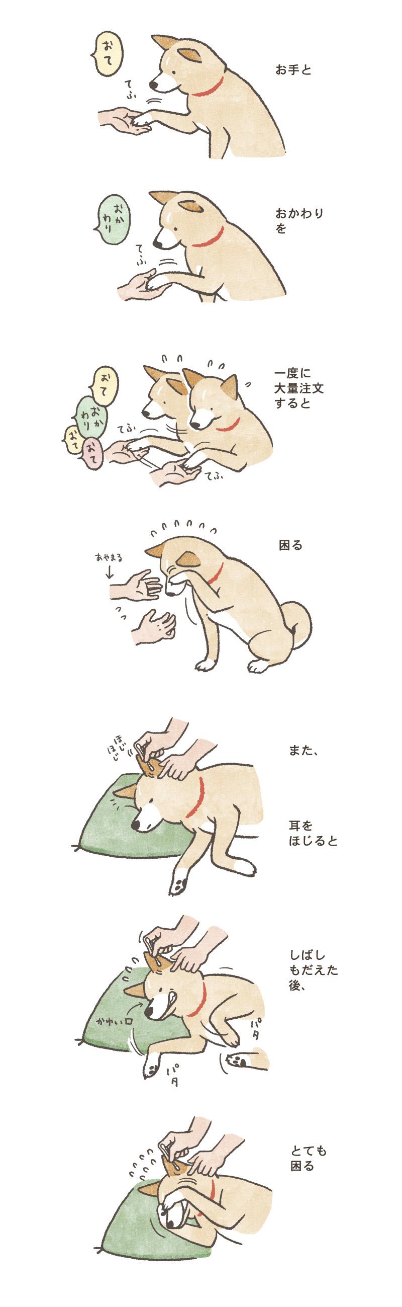 09inukomaru_800.jpg