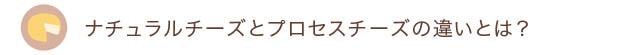 20150516midashi01 .jpg