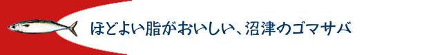 caba_komi02_02.jpg