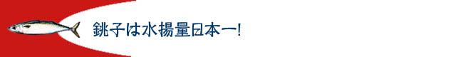caba_komi03_02.jpg