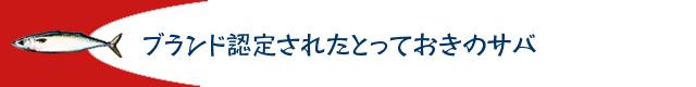 caba_komi05_02.jpg