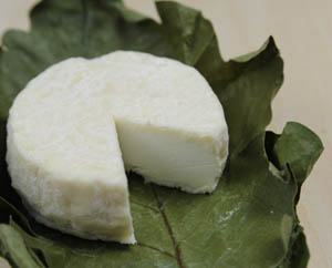 mirasaka_cheese1.JPG