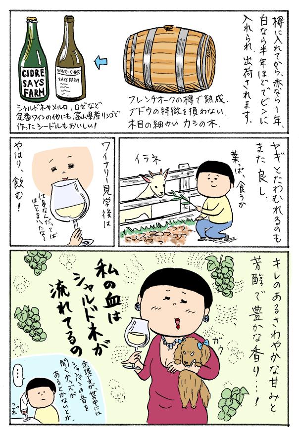 toyama_04_03.jpg